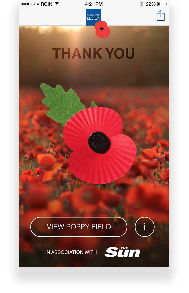 poppy appeal - photo #3